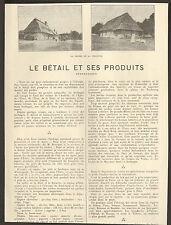 27 LE BETAIL ET SES PRODUITS AGRICULTURE ELEVAGE ARTICLE DE PRESSE 1924