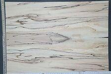Tonewood Spalted Maple 18115 Bastelholz Ahorn Aufleimer Guitar Tonholz Blank