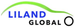 Liland IST94 Fuel Tank Straps for 79-89 Dodge/Hyundai/Mitsubishi/Plymouth models