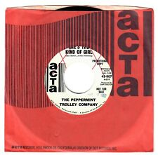 The Peppermint Trolley Company 1967 Acta 45rpm She's The Kind Of Girl pSyCh Pop