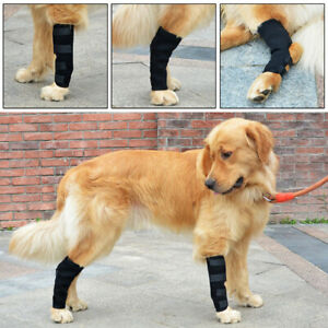 Shockproof Dog Knee Pad Pet Leg Support Brace for Hurt Hock Joint Wrap Protector