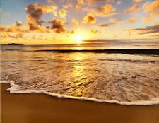 FotoTapete Sonnenuntergang Strand KT409 Größe:350x270cm Beach Wasser Strand NEUe