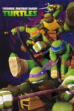 Teenage Mutant Ninja Turtles Poster Print, 24x36