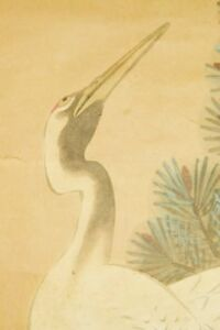 """JAPANESE PAINTING CRANE HANGING SCROLL 76.4"""" AGED ART Pine Picture Japan c348"""