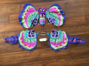 Chinese Handmade and Hand Painted Silk Butterfly Kite With Box