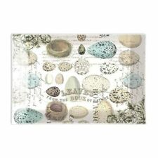 "Michel Design Works ""Nest and Eggs"" Rectangular Glass Soap Dish"