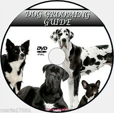 DOG GROOMING VIDEO DVD GUIDE EASY TO FOLLOW EXPERT TUITION CLIPPING BATHING NEW