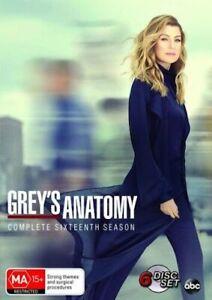 Grey's Anatomy : Season 16 : NEW DVD