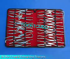 28 Pcs Extracting  Forceps Surgical Dental Instrument