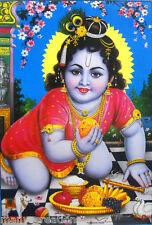 "Laddoo Gopal Bal Krishna Hindu God Poster Large Big Religious 21""X 31"" (LM2408)"