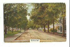 1909 Postcard Williams Street Salisbury Md Unpaved Tree Lined Flag Cancellation