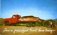 Saw a fair-sized trout here today.  Exaggerated Fish Red Truck Photo ~ Postcard