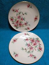 Lenox Peachtree Pattern 2 Dinner Plate