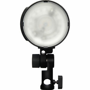 Profoto B10X Off Camera Flash and Continuous Light
