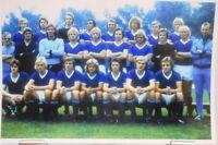 FC Schalke 04 + DFB Pokalsieger 1972 + Das Team + Hochglanzfoto 19,0x12,7 cm #10