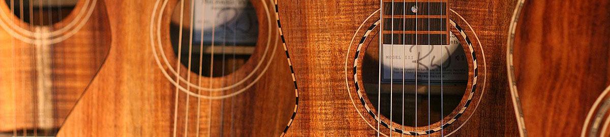 Weissenborn Slide Guitar Co