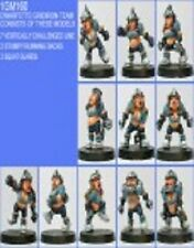 Shadowforge Dwarf Female Team x 11