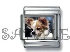 CUTE LONG HAIR CHIHUAHUA PUPPY DOG 9MM ITALIAN CHARM LINK love pet animal tiny
