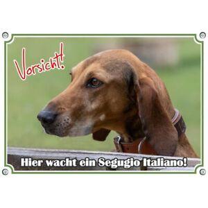 Hundeschild mit Segugi Italinao - dem italienischen Jagdhund mit den langen Ohre