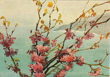 1957 Soviet Russian postcard JUDAS TREE by A.Podyapolskaya