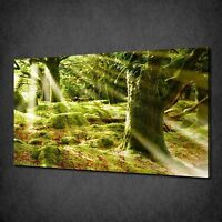 MYSTICAL FOREST SUNSET TREE CANVAS WALL ART PRINT PICTURE READY TO HANG
