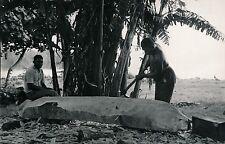 TAHITI c. 1940 - Fabrication d'une Pirogue - Photo Nordmann - T 217
