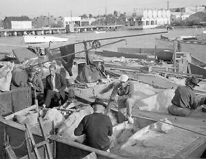 "1938 Fishermen, Key West, Florida Vintage Old Photo 8.5"" x 11"" Reprint"