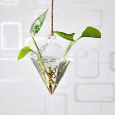 A562 Hängevase  Hängeglaskübel Für  Hängeterrarium Klar Glas Blume Übertopf