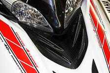 Yamaha Apex snowmobile custom carbon fiber air box cover 06-10 all models LTX SE