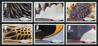 Falkland Islands 2019 MNH Feathers 6v Set Ducks Owls Penguins Birds Stamps
