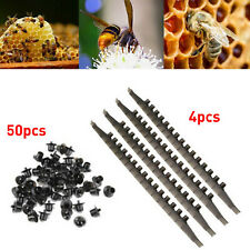 50Pcs Beekeeping Queen Rearing  Base Mount Cell Cups w/ Bee Frame Cell Bar Strip