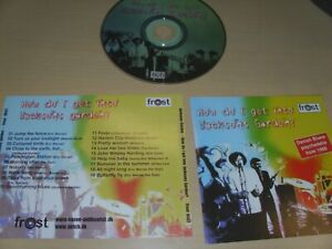 "JACKSONS GARDEN "" HOW DO I GET INTO "" 2002  CD !"
