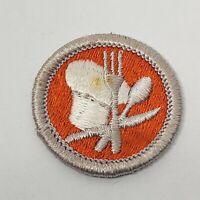 Reading Green Border Plastic Back BSA Merit Badge Boy Scout 200520