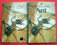 The Story Of The Ant Ladybird vintage book insects queen termite beetle farm '80
