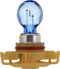 Fog Light Bulb-Limited Philips PSX24WCVB1
