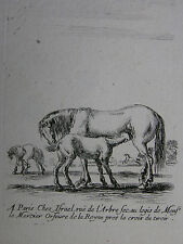 S. DELLA BELLA ´STUTE EIN FOHLEN SÄUGEND; MARE SUCKLING A FOAL´ VESME 243, ~1645