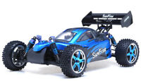 Exceed RC 1/10 Scale 2.4Ghz Brushless PRO Electric RTR Off Road Buggy DD BLUE