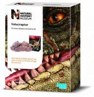 Natural History Museum Velociraptor Dinosaur Skeleton Excavation Kit   NEW