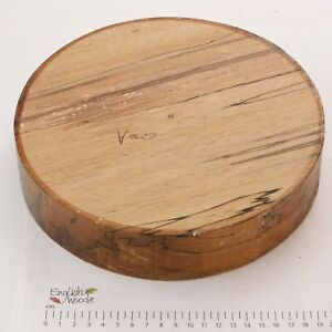 English Spalted Beech woodturning or wood carving bowl blank.  230 x 50mm. 6270A