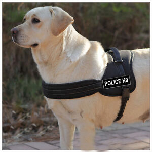 Black & Red Nylon Working Dog Harness Removable Chest Plate & label Patches
