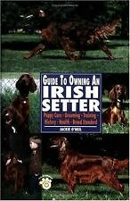 Guide to Owning an Irish Setter (Re Dog)