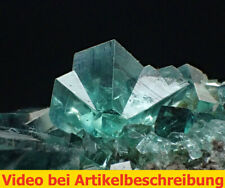 7441 Fluorit UV ca 7*6*4 cm daylight fluorescence Rogerley Mine GB 2014 MOVIE