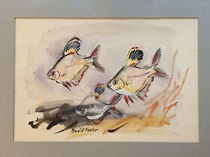 """David Koster - Watercolour """" Enamel Fins"""""""