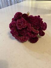 Cockscomb *~ Assorted Burgundy Pink Dried Flower Bunch Bouquet Bundle * Wedding