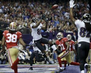 ANQUAN BOLDIN 8X10 PHOTO BALTIMORE RAVENS PICTURE NFL