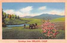 Orland California Greeting Spring Horse Cart Antique Postcard K35325