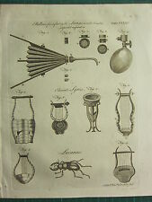 1797 GEORGIAN PRINT ~ BELLOWS FOR INFLATING LUNGS RESPIRATION ANCIENT LYRES