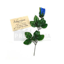 THE ORDER NETFLIX TV SERIES Blue Rose and Card Prop
