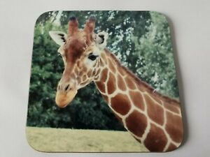 Set of 2 Giraffe Coasters ideal gift for an animal lover