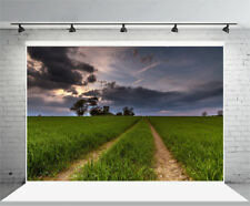 5x3FT Twilight Green Wheat Field Photography Background Photo Studio Props Vinyl